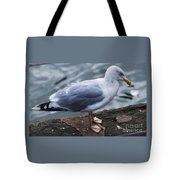 Where Did I Put That Fish? Tote Bag