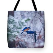 Where Did Spring Go Tote Bag