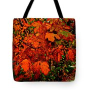 Where Has All The Red Gone - Autumn Leaves - Orange Tote Bag