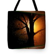 Where Have All The Flowers Gone-featured In Harmony And Happiness-naturephoto-visions Of The Night  Tote Bag