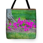 Where Petunia Grows Tote Bag