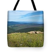 Where The Caribou Roam Near Taylor Highway-ak  Tote Bag