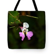 Where The Faerie Bonnets Come From Tote Bag
