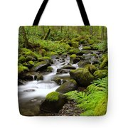 Where The Song Flows Into A Dream  Tote Bag