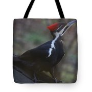 Which Way Is The Suet? Tote Bag