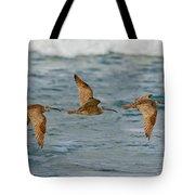 Whimbrel Trio In Flight Tote Bag