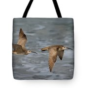 Whimbrels Flying Above Beach Tote Bag