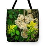 Whirled Turkey Fungus Tote Bag