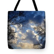 Whispers Of Winter Present Tote Bag