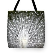 Whit Peacock Tote Bag