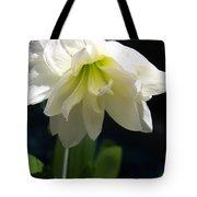 White Amarillys Tote Bag