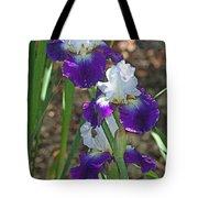White And Blue Iris Stalks At Boyce Thompson Arboretum Tote Bag