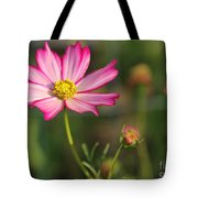 White And Magenta Cosmos Tote Bag