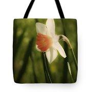 White And Orange Daffodil Tote Bag
