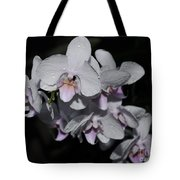 White And Pale Pink Phalaenopsis  165 Tote Bag