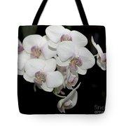 White And Pale Pink Phalaenopsis   9920 Tote Bag