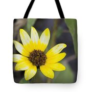 White And Yellow Sunflower Tote Bag