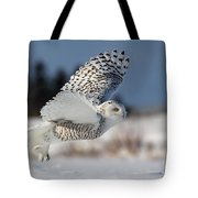 White Angel - Snowy Owl In Flight Tote Bag by Mircea Costina Photography