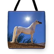 White Beauty Under The Moonlight Tote Bag