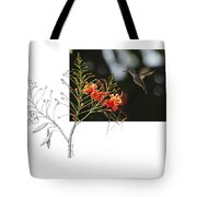 White-bellied Emerald Tote Bag