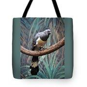 White-bellied Go-away-bird Tote Bag