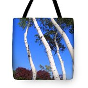 White Birch Blue Sky Tote Bag