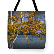 White Birch Tree In Autumn Along The Shore Of Crystal Lake Tote Bag