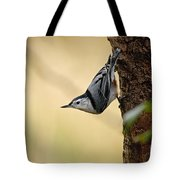 White-breasted Nuthatch Pictures 46 Tote Bag