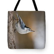 White-breasted Nuthatch Pictures 88 Tote Bag