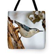 White-breasted Nuthatch Pictures 97 Tote Bag