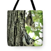 White Breasted Nuthatches Tote Bag