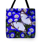White Butterfly On Blue Cineraria Tote Bag