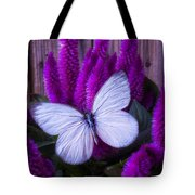 White Butterfly On Flowering Celosia Tote Bag