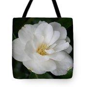 Snow White Camellia Tote Bag