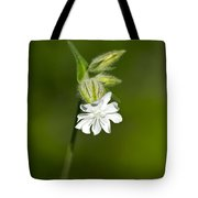 White Campion Flower Tote Bag by Christina Rollo