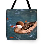 White-cheeked Pintail Tote Bag