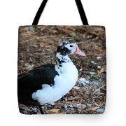 White Chested Muscovy Tote Bag