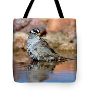 White-crowned Sparrow Bathing Tote Bag