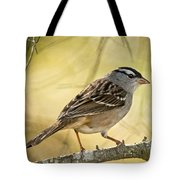 White-crowned Sparrow Pictures 63 Tote Bag