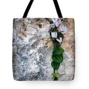 White Cyclamen Flowers Tote Bag