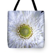 White Daisy Close Up Tote Bag