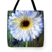 White Daisy With Green Wall Tote Bag