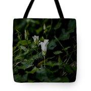White Db Tote Bag