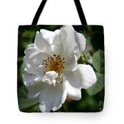 White Dog Rose Tote Bag
