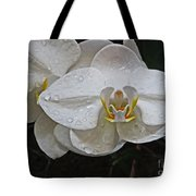 White Dream Orchid Tote Bag