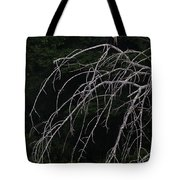 White Egret   #9120 Tote Bag