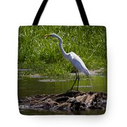 White Egret And Snapping Turtles Tote Bag