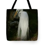 White Egret In The Shadows Tote Bag