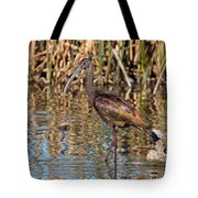 White-faced Ibis In The Wetlands Tote Bag