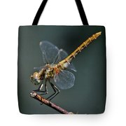 White-faced Meadowhawk Tote Bag